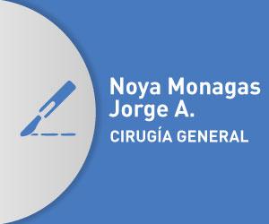 Noya Monagas Jorge A